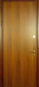 Дверь с ламинат покрытием № 8